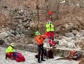 كلب يساعد صاحبه على البقاء حيا بعد إصابته فى جبال الألب.. فيديو وصور
