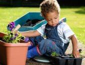 نباتات يمكنك تعليم أطفالك زراعتها فى المنزل بسهولة.. أبرزها البطاطا