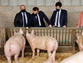 إيمانيول ماكرون يتفقد مزارع الحيوانات في فرنسا.. صور