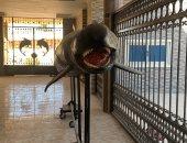 """""""القاتل الكاذب"""".. أكبر كائن بحرى محنط داخل معهد علوم البحار بالغردقة.. صور"""