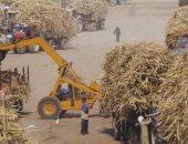 التموين تعلن عن مناقصة لشراء 200 ألف طن من سكر القصب الخام