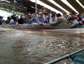 وزير الزراعة ومحافظ جنوب سيناء فى زيارة لمزرعة الاستزارع السمكى والصوب الزراعية