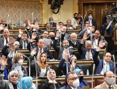 """مجلس النواب يوافق على إنشاء مجلس مراقبة """"عمليات الدم"""" بوزارة الصحة"""