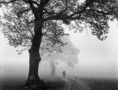 """100 صورة عالمية .. """"السير فى الضباب"""" رجل وكلبه فى طريق غير واضح"""