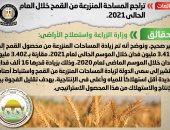 الحكومة: زيادة مساحات القمح المنزرعة إلى 3.418 مليون فدان الموسم الحالي