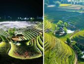 محللون: خطة الصين الخمسية للتنمية ستعتمد على التكنولوجيا الخضراء