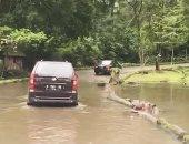 سائحة تثير الغضب لإلقائها زجاجة بلاستيكية فى فم فرس النهر بإندونيسيا.. فيديو