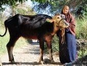 15 رقم يكشف 3.19 مليون مستفيد من القروض الصغيرة فى مصر