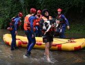 فيضانات سيدنى.. مهمة استثنائية لإنقاذ 20 كلبا فى استراليا.. صور