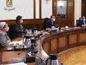 أخبار مصر.. معلومات الوزراء: قطاع الصحة الرقمية فى مصر يشهد نموا كبيرا