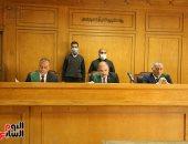 """دفاع """"طفلة المعادى"""" يطالب بأقصى عقوبة على المتهم.. والمحكمة: التوعية هى الحل"""
