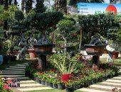 معرض الزهور يشهد إقبالاً كثيفًا فى دورته الـ 88 بحديقة الأورمان