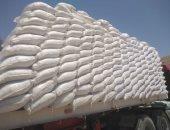 تصدير 3800 طن ملح إلى بلغاريا عبر ميناء العريش