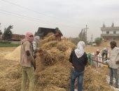 وزير الزراعة يعلن بدء موسم حصاد القمح.. ويؤكد: المحصول يبشر بالخير هذا العام