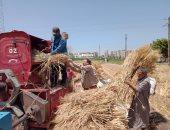 واردات القمح المصرى تتراجع لـ68 مليون دولار فى يونيه الماضى