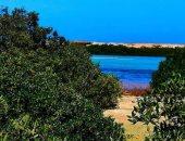 شاهد جمال الطبيعة الخلابة بشواطئ مرسى علم × 10 صور
