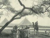 100 صورة عالمية.. الأهرامات والنيل وناس مصر