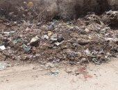 أهالى بندار الكرمانية بسوهاج يشكون انتشار القمامة بالطريق العام.. ورئيس المدينة يستجيب