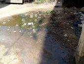 أهالى مساكن أيواء الدفراوية بطنطا يشكون انتشار مياه الصرف.. ورئيس الحى يستجيب