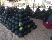 """وزير الزراعة لـ""""على مسئوليتى"""": مصر تصدر البطيخ إلى أكثر من 16 دولة"""