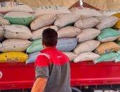 توريد 125372 طن قمح موردة لـ57 صومعة وشونه بكفر الشيخ والبحيرة