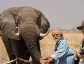 الحيوانات البرية أبطال حقيقية لأفلام السينما العالمية.. ألبوم صور