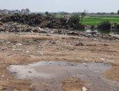 الجيزة تستجيب لأهالى قرية المعتمدية وتزيل القمامة من المنطقة الزراعية