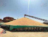خطة التنمية الاقتصادية.. تحقيق الاكتفاء الذاتى من القمح بنسبة 65% عام 2025