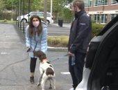 مراسلة تليفزيونية تكشف بالصدفة سرقة كلب قيمته 1200 دولار خلال تقرير على الهواء