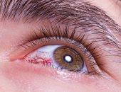 كيف يمكنك إراحة عينيك أثناء العمل؟.. تعرف على طرق بسيطة للحماية