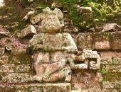 كنور الأدغال.. آثار نادرة  وتحف فريدة فى الغابات المهجورة..ألبوم صور