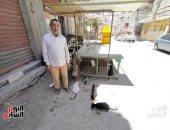 """""""القطط عارفاه وبيأكلهم بإيديه"""".. حكاية عم مسعد فى إطعام القطط بالمحلة """"فيديو"""""""