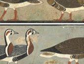 هل هذه اللوحة الجدارية المصرية القديمة تصور أنواعًا منقرضة من الأوز؟