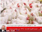 نصائح هامة عند شراء الدواجن الحية.. التفاصيل فى تغطية تليفزيون اليوم السابع