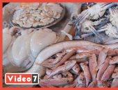 من داخل سوق المنيب.. أسعار السمك تبدأ من 30 جنيها