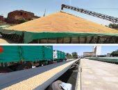ميناء دمياط: رصيد القمح فى مخازن القطاع الخاص 36848 طنا
