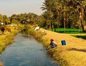 100 صورة عالمية.. الترعة والضوء وفتاة مصرية