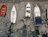 """""""مخاط بحرى"""" يهدد الحياة البحرية والصيد فى بحر مرمرة بتركيا.. التفاصيل"""
