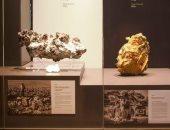 الصخور الأكثر قيمة بالعالم .. عينة من الذهب والفضة فى معرض بأستراليا