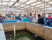 كلية الثروة السمكية والمصائد تؤهل الطلاب لسوق العمل بمصانع وأحواض سميكة.. صور وفيديو
