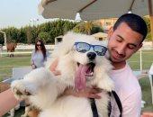 """ملك جمال الكلاب.. الجايزة 3 آلاف جنيه وإكسسوارات ودراى فود """"فيديو"""""""