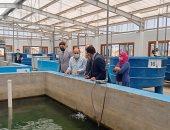 تأهيل الطلاب لسوق العمل بكلية الثروة السمكية بكفر الشيخ.. صور