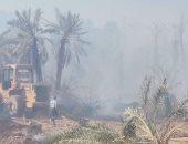 تفحم 70 نخلة فى حريق بمدينة موط بالوادى الجديد دون إصابات.. صور