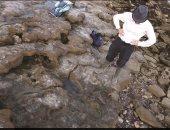 اكتشاف آثار أقدام آخر الديناصورات في إنجلترا.. سار على تراب المملكة قبل 110 ملايين عام