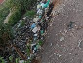أهالى عزبة أم الشوك بالزقازيق يشكون انتشار القمامة بالشارع.. والمحافظة ترد