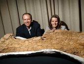 الكشف عن عظام أحد أكبر ديناصورات العالم بعد مهمة استكشاف استمرت 15 عاما.. صور