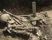دراسة حديثة.. شاهد رجل يابانى تعرض لـ هجوم سمكة قرش فى عصور ما قبل التاريخ
