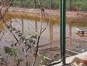 """أهالى قرية """"باويل"""" بالأقصر تناشد رفع مياه الصرف الصحى المتراكمة بمركز الشباب.. ومسئول يرد"""