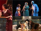 """مسرح الدولة يعيد تقديم عرضى """"أفراح القبة"""" و""""الكلاب"""" لفرقة مسرح الشباب"""