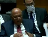 وزير الخارجية: الفجوة بمعدل التطعيم ضد كورونا بين الدول النامية والمتقدمة تتسع